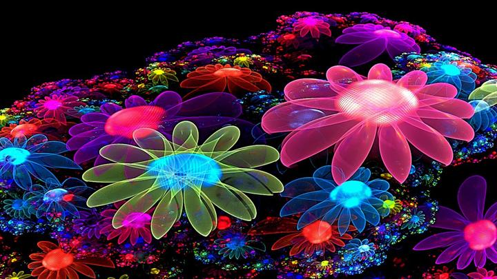 3 boyutlu çiçek resimleri