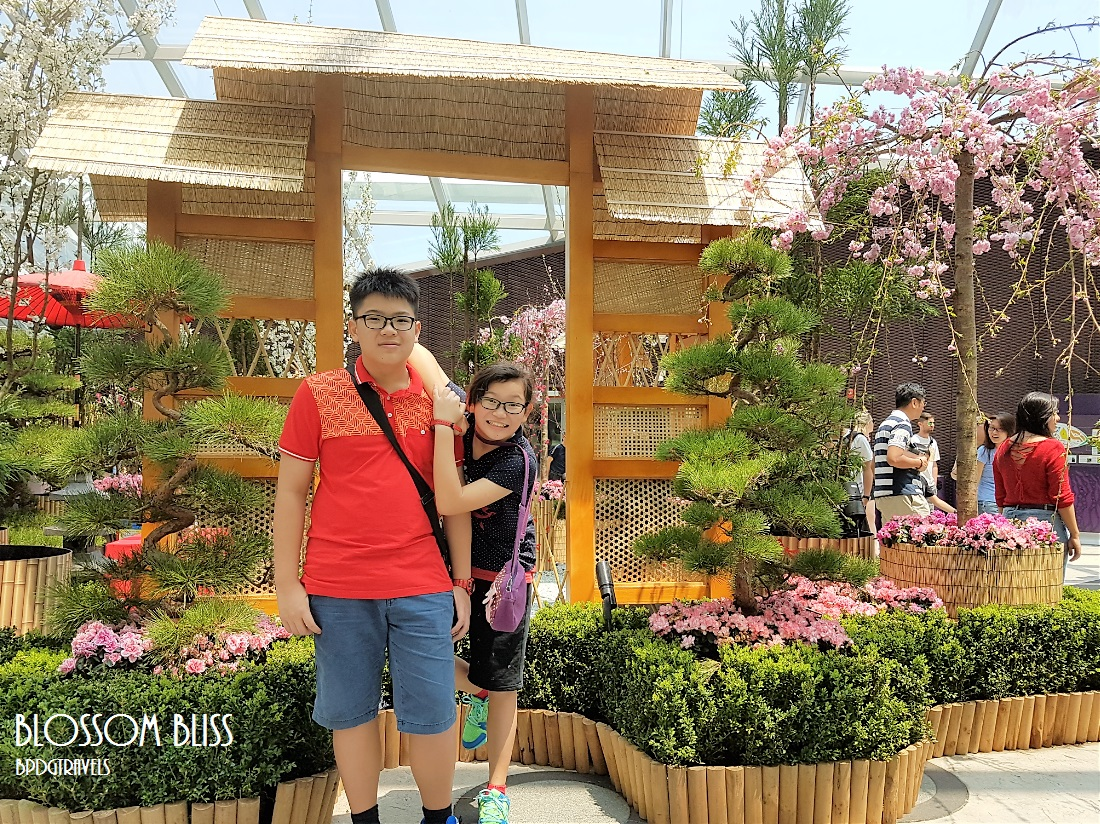 The HENG Family Travel & Lifestyle Blog: Blossom Bliss @ Gardens by ...