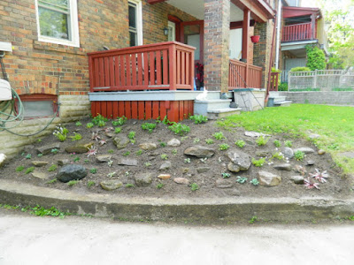 Forest Hill Toronto rock garden makeover by Paul Jung Gardening Services