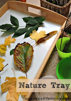 Playing with nature for toddlers and preschoolers. Set up a simple nature table/ tray this Autumn/ Fall.