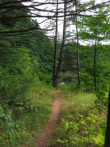 Ice Age Trail Hartman Creek Segment