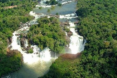 Florestas  Amazônica