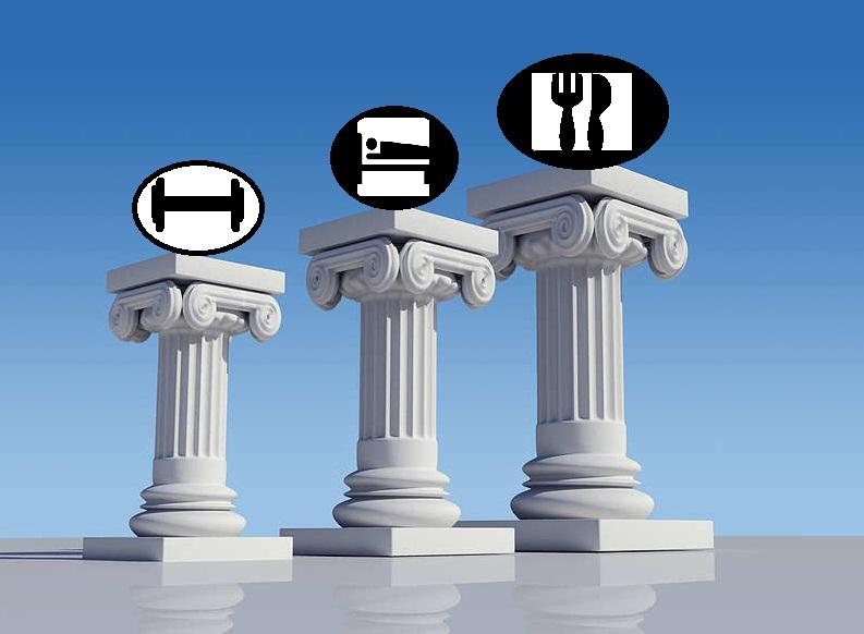 Los 3 Pilares Fundamentales del Entrenamiento