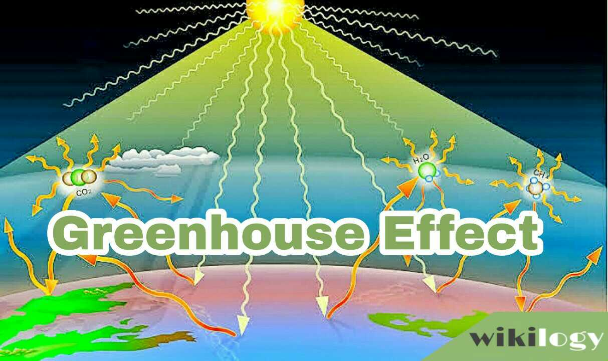 Greenhouse Effect Paragraph