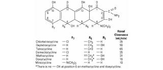 Tetrasiklin menghambat sintesis protein dengan berikatan pada subunit ribosom  Tetrasiklin