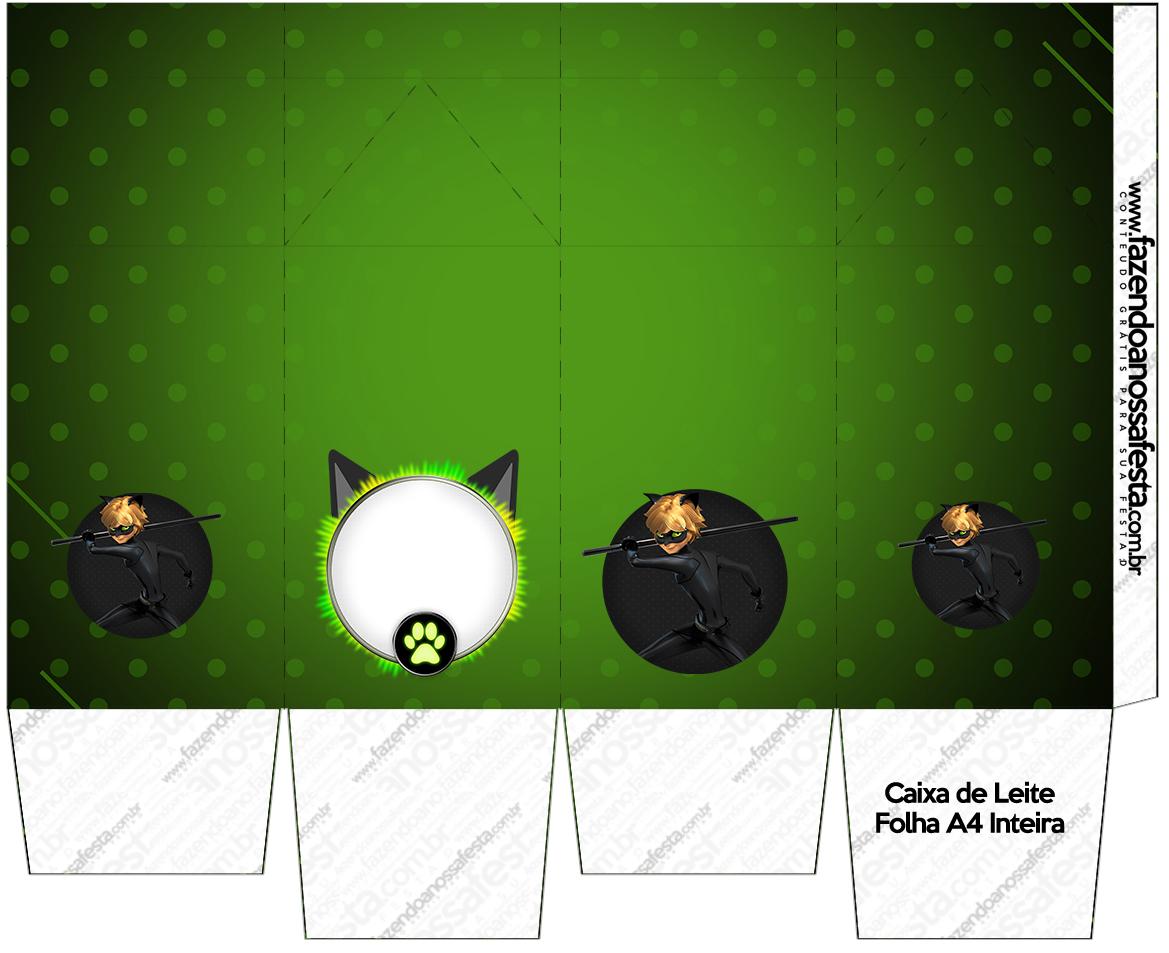 cat noir  free printable boxes