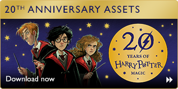 harry potter 20th anniversary