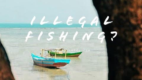 Illegal Fishing di Indonesia, Mengapa Perlu Diperangi?