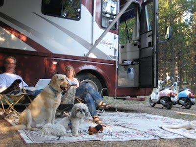 Camping in Motorhomes in Lake Havasu City, Arizona