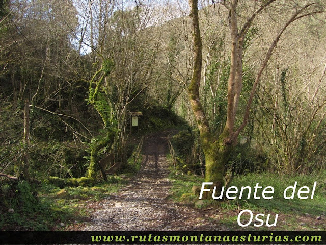 Fuente del Osu, Belmonte
