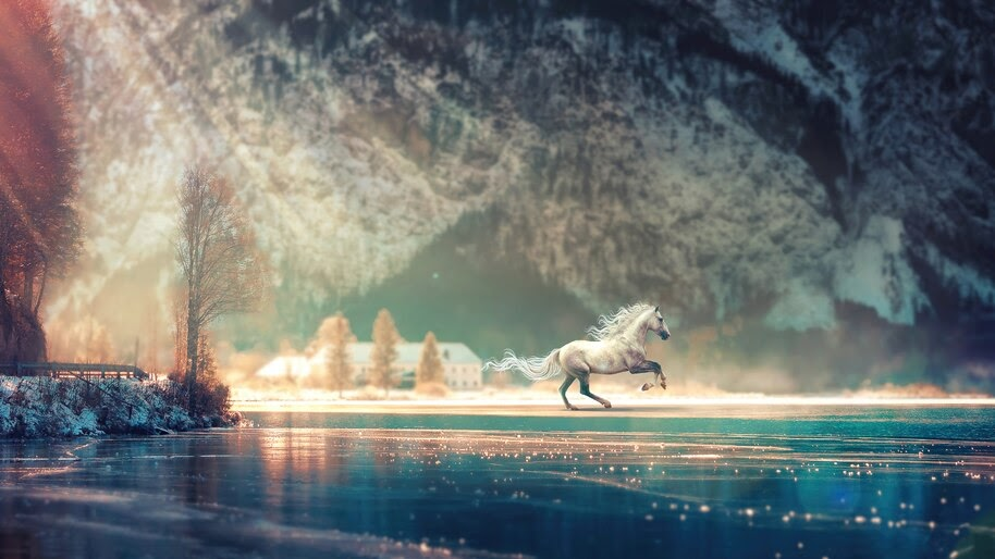 White, Horse, Scenery, 4K, #6.2205 Wallpaper