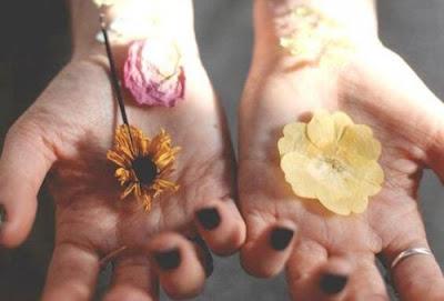 2-mains-2-fleurs-fraiche-fanee