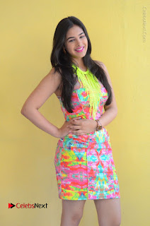 Telugu Actress Prasanna Stills in Short Dress at Inkenti Nuvve Cheppu Press Meet Stills  0020.JPG