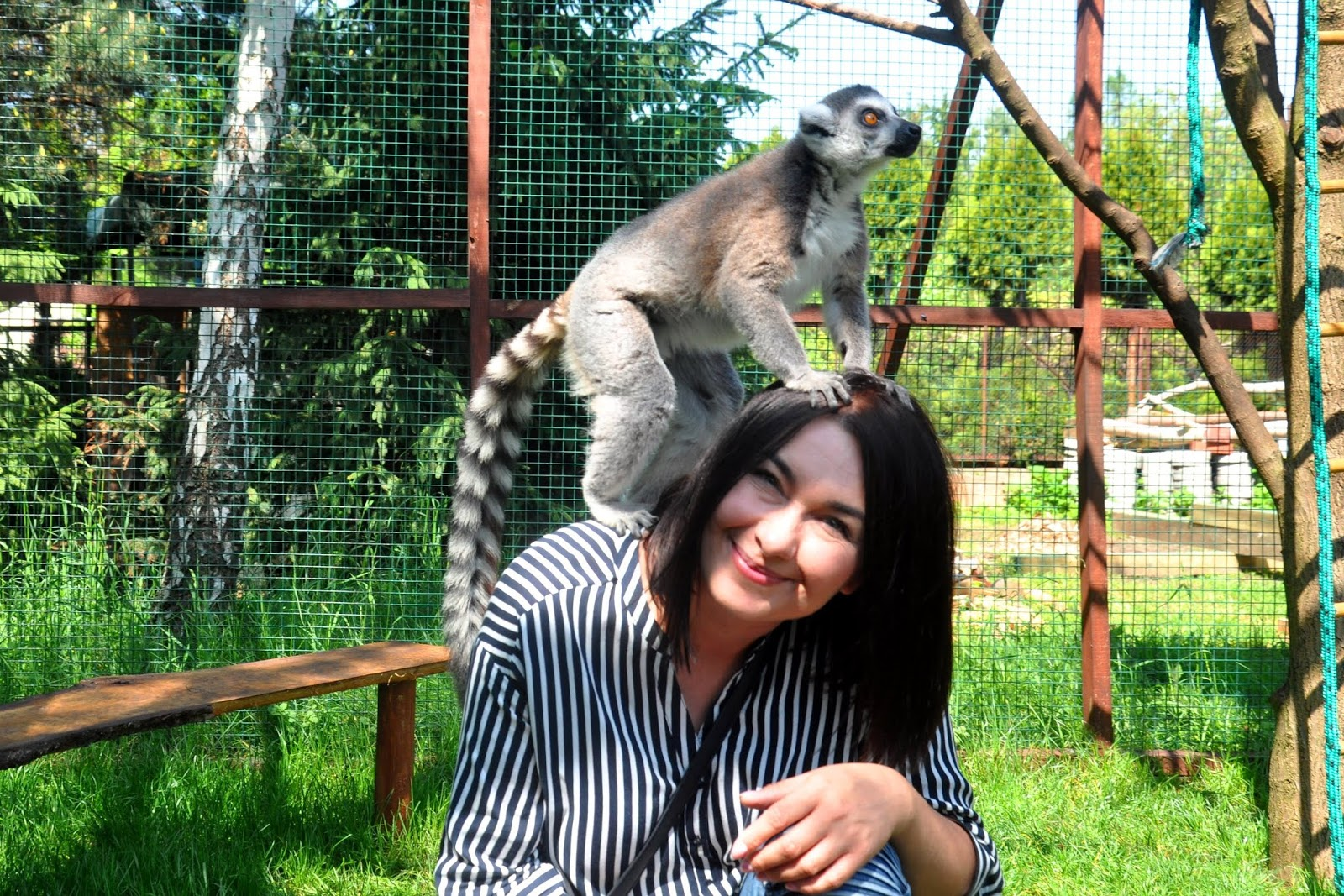Czy warto odwiedzić Lemur Park w Rumi? Jesteśmy na TAK!