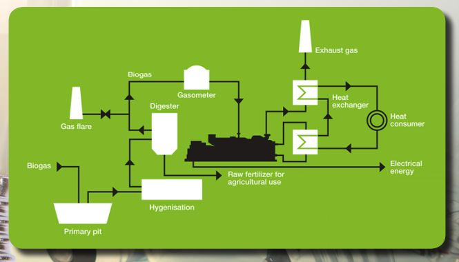Biogas (CHP) Power Plants - LIDER ORG PRIVATE LIMITED