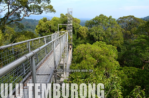 Visiting Ulu Temburong