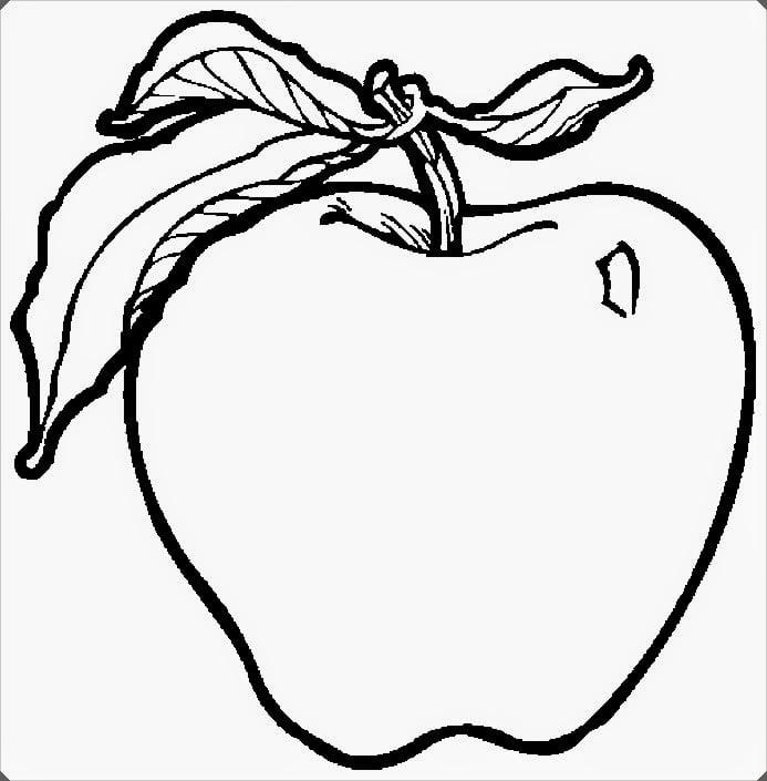 Meyve Boyama Resimleri