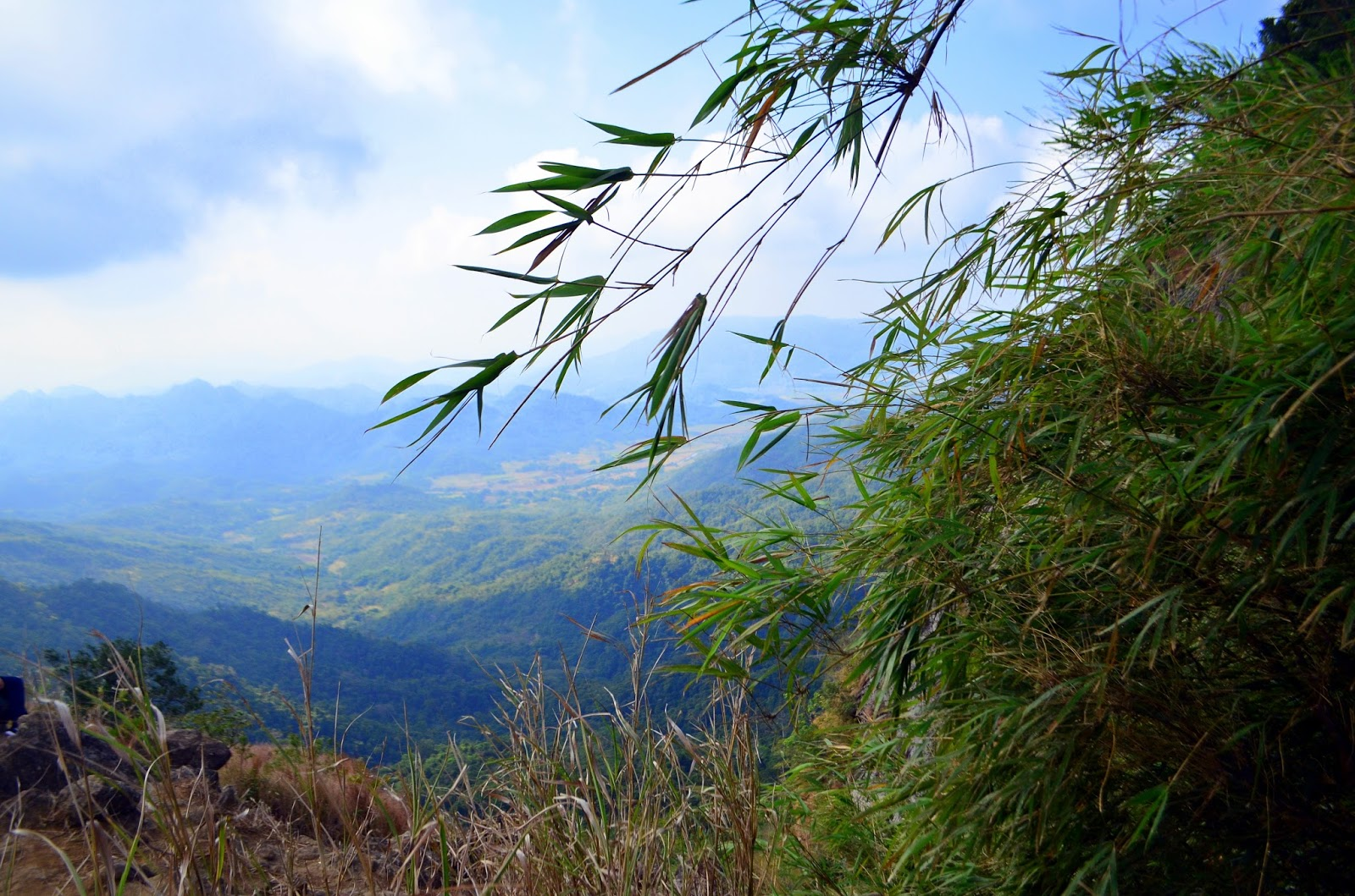 view from campsite pico de loro
