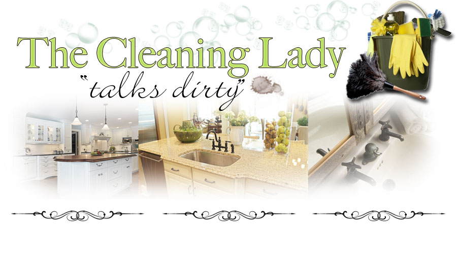 0d55cd8d36617 The Cleaning Lady Talks Dirty  Everything you need to know about ...