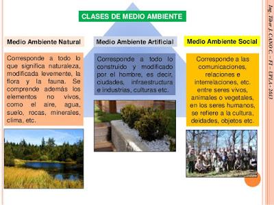 clases de medio ambiente
