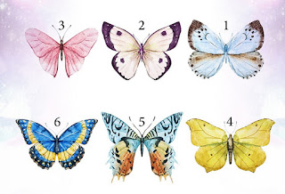 اكتشف أسرار حياتك من خلال الفراشة المفضلة لديك