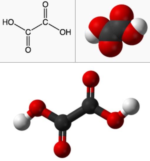 Rumus Kimia Asam Oksalat