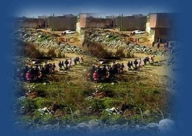 بالفيديو:  تلاميذ مهددون بالغرق في الواد بحي المصالحة  بالشلف