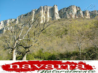 213 Cueva de San Prudencio Sierra Lókiz Monumento Pétreo Singular     www.casaruralurbasa.com  Robles San Pablo y  Farallón San Prudencio