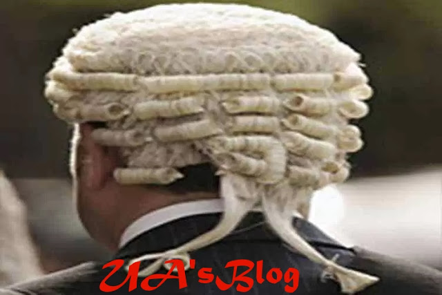 NASS Goofed At Reordering INEC's Timetable –Constitutional Lawyer