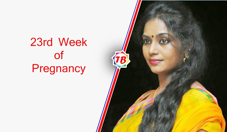 23rd week of pregnancy