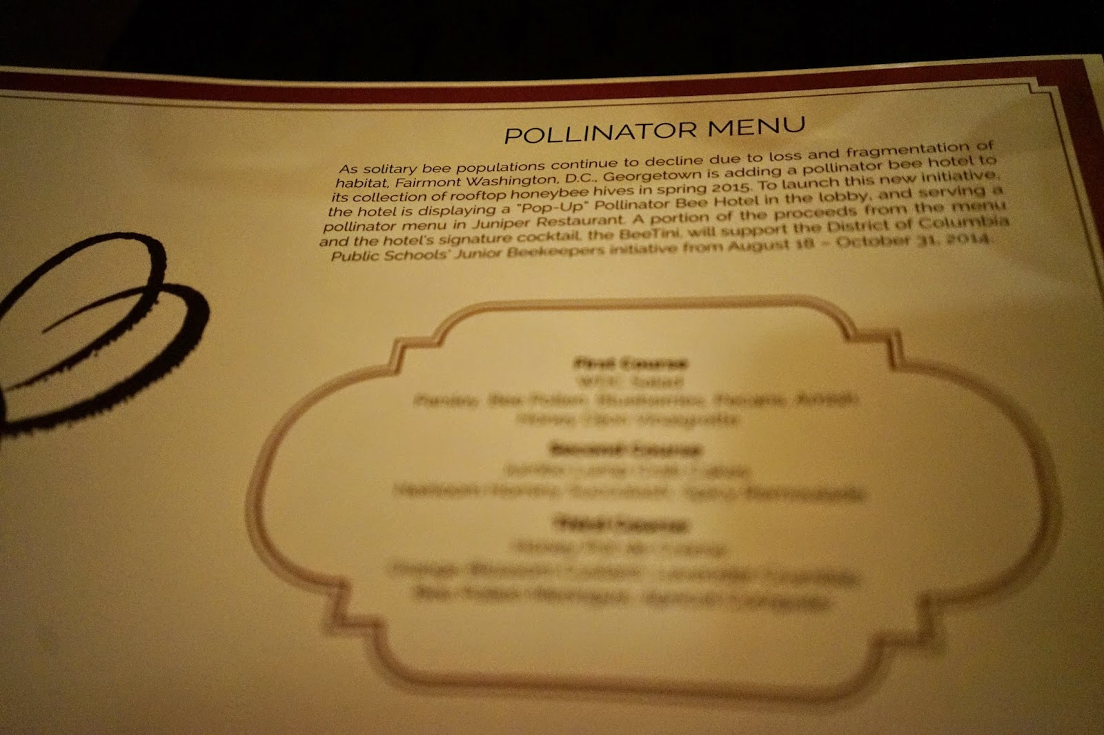 juniper restaurant washington d.c