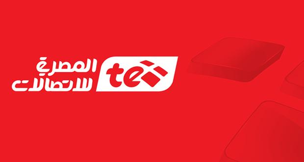 الاستعلام عن فاتورة التليفون المنزلي, الشركة المصرية للاتصالات
