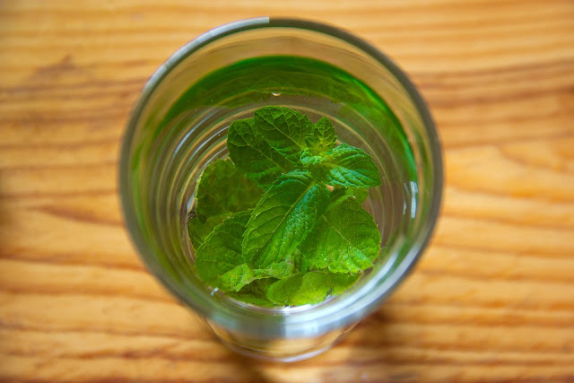 Medicinal properties in the mint leaves
