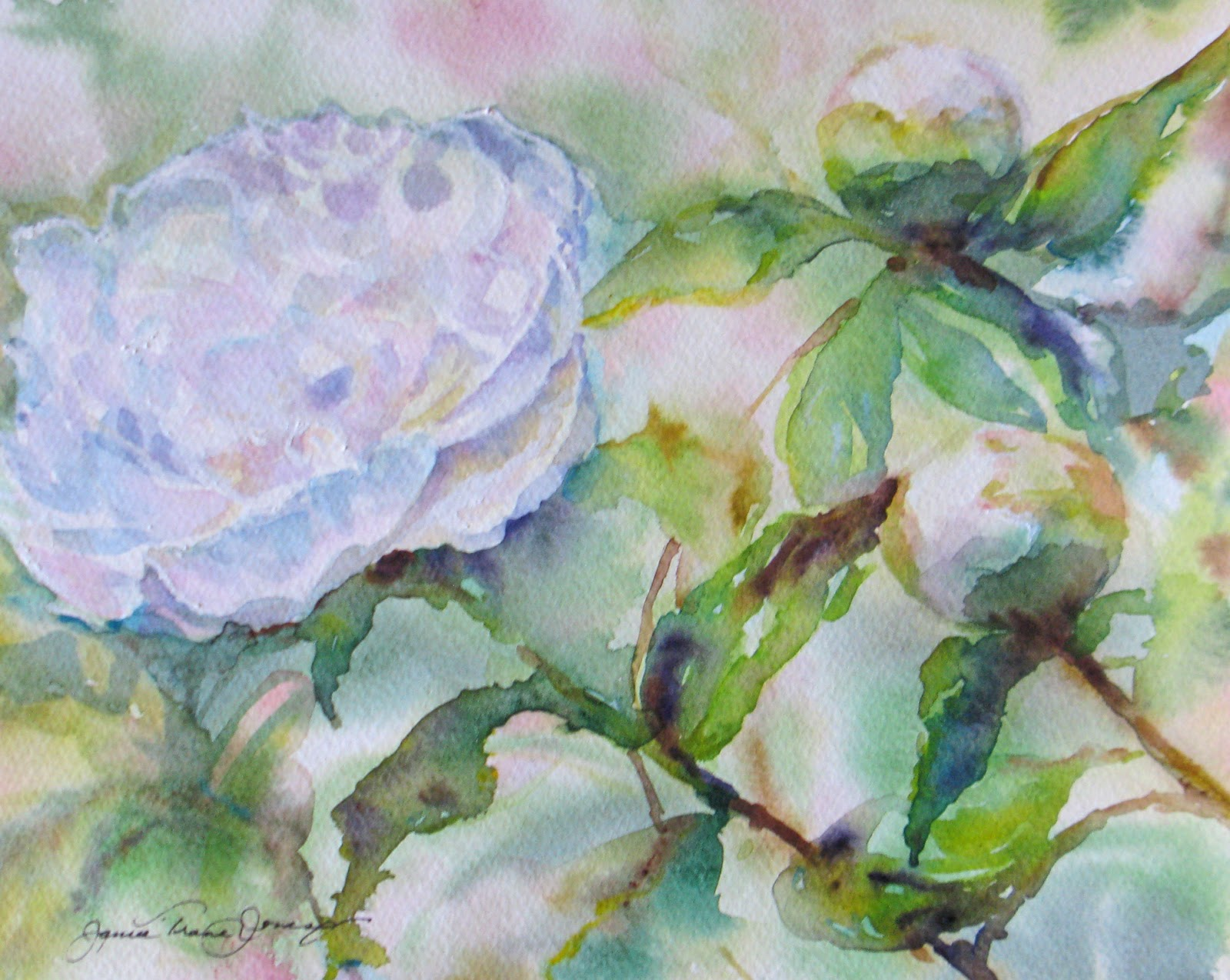 Daily Painters Abstract Gallery: SOLD Persuasive Peonies ...