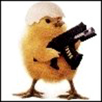 Funny animal 05 23 11 - Pictures of funny animals with guns ...