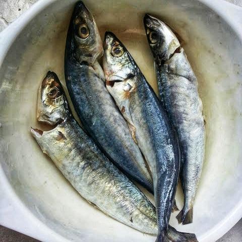 Cara Memasak Ikan Sardin Goreng Sambal