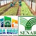 Prefeitura de Boa Hora e SENAR-PI vai oferecer curso de qualificação para produtores rurais