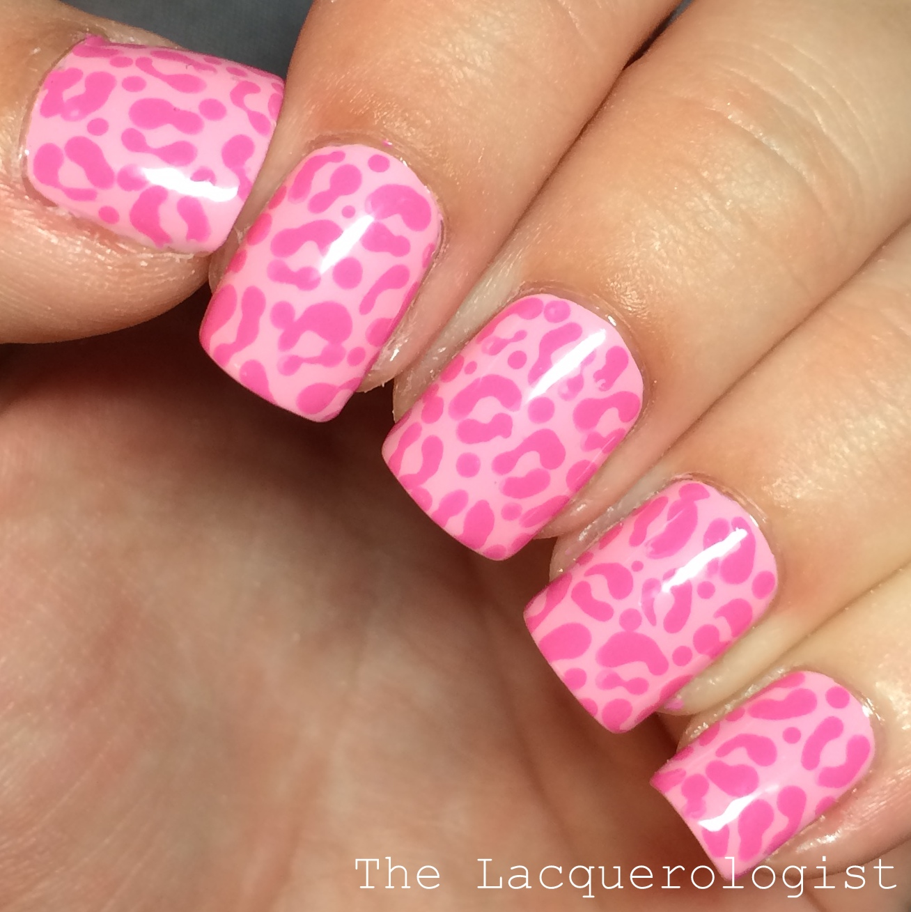 Monochromatic pink leopard nail art jamie nates wedding the base of this manicure is opi suzi shops island hops i did the leopard detailing with my dotting tool and china glaze dont mesa with my heart prinsesfo Choice Image