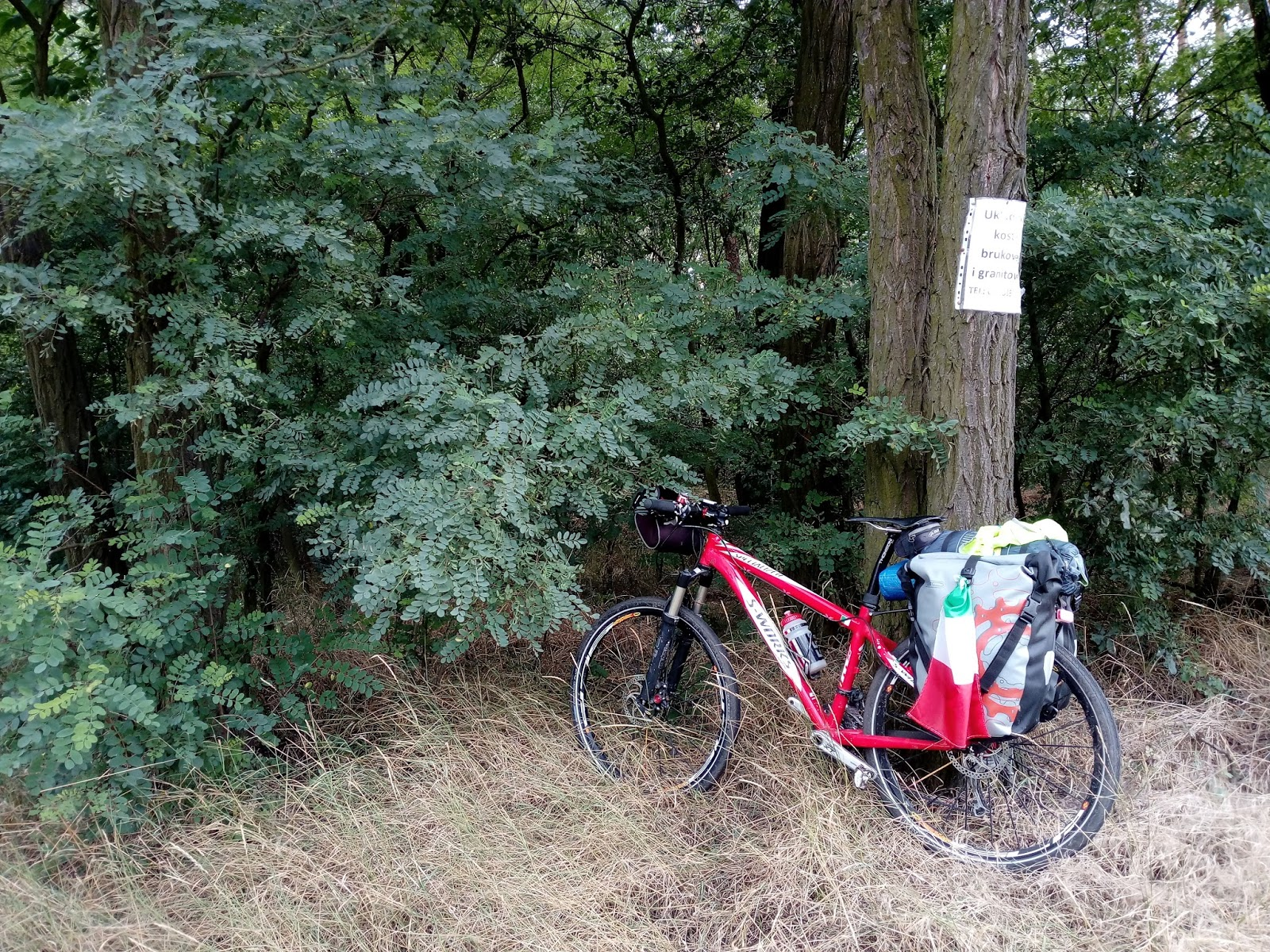 Una volpe a pedali. viaggi in bici: tredicesima tappa: da olesnica ...
