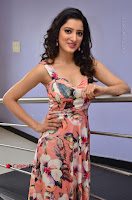 Actress Richa Panai Pos in Sleeveless Floral Long Dress at Rakshaka Batudu Movie Pre Release Function  0087.JPG