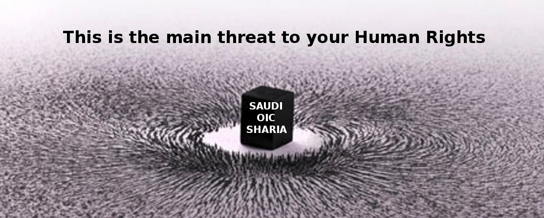 This (via Saudi steered sharia finance) is the biggest threat to your Human Rights