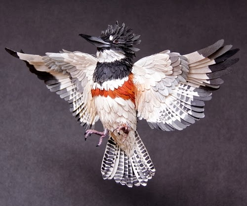 03-Belted-Kingfisher-Paper-Bird-Sculptures-Colombian-Artist-Diana-Beltran-Herrera-www-designstack-co