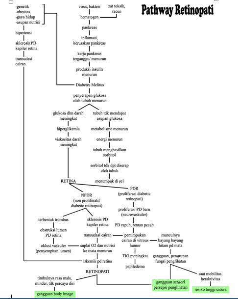 Mikroba dan aspek biokimiawi selama fermentasi dengan kadar garam rendah. pathway retinopati