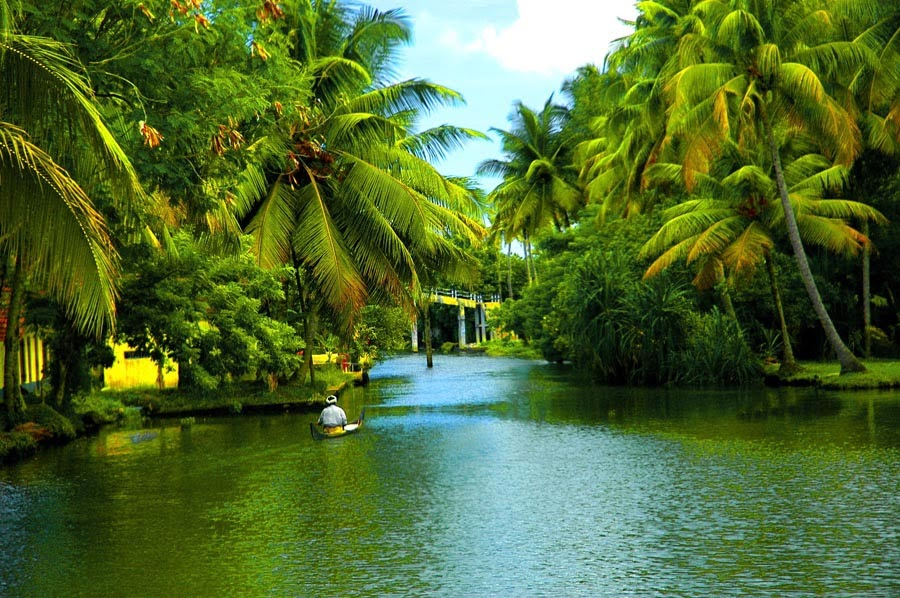 backwaters of alappuzha in kerala
