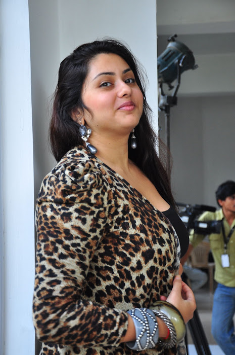namitha spicy photo gallery