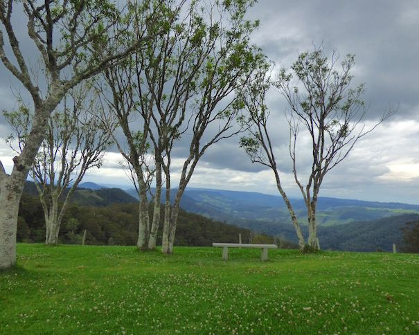 near Green Mountain, Lamington National Park, QLD, Oz