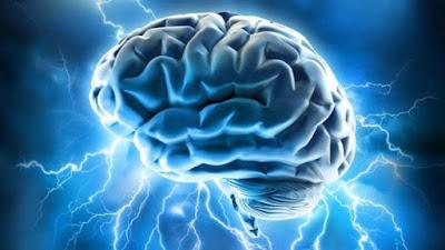 7 Fakta Otak Yang Mencengangkan