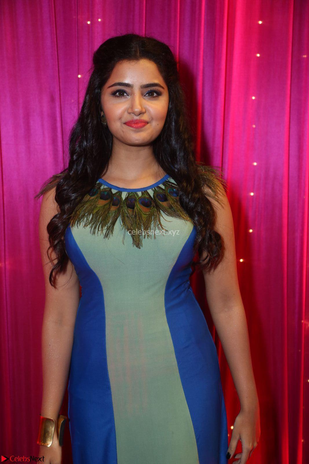 Anupama Parameswaran in a cute Peacock feather gown ~ CelebsNext Exclusive