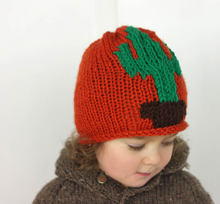 Cactus Baby Hat Free Knitting Pattern - Gina Michele