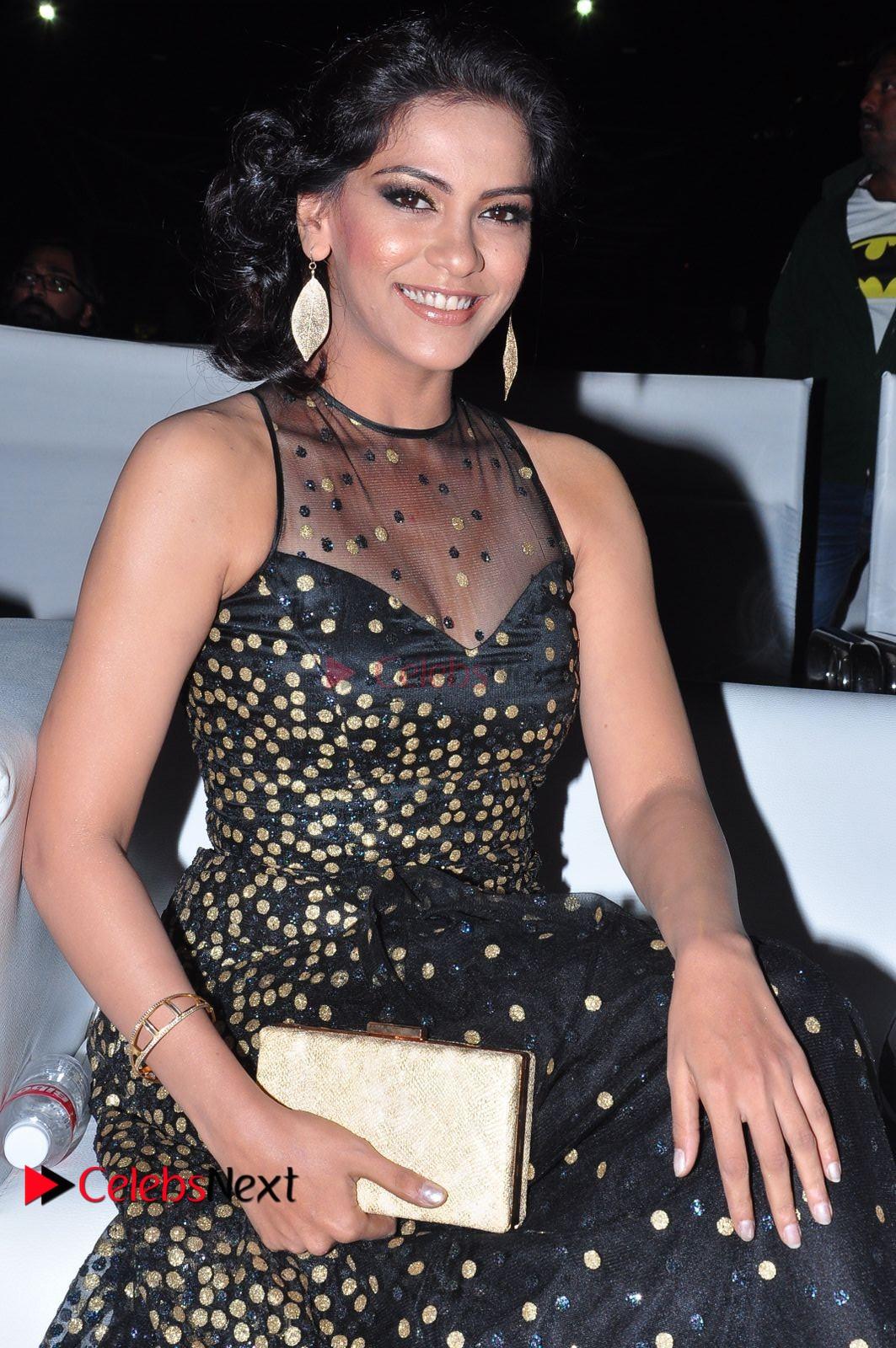 Actress Zabyn Khan Stills in Long Dress at 9th Edition Epicurus Indian Hospitality Awards .COM 0010.JPG
